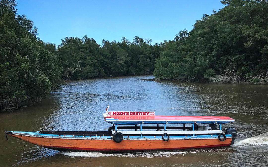 Werkbezoek Suriname, Paramaribo en het binnenland.